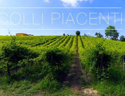 Colli Piacentini